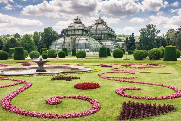 What to do in Viena